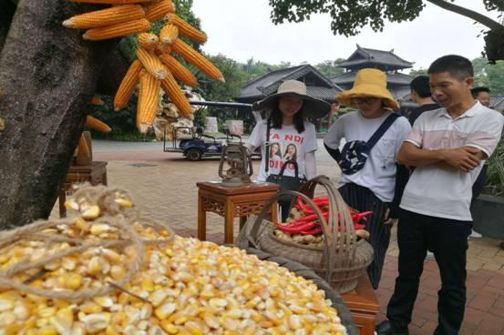 广西:首届中国农民丰收节南宁青秀山启动